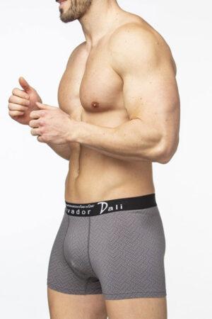 SD2053-3 Трусы мужские Salvador Dali боксеры